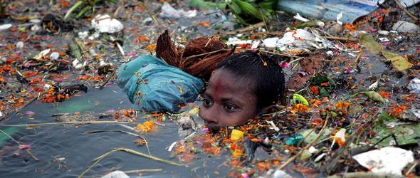 Környezetszennyezés: hasonló a maláriához a kártétel