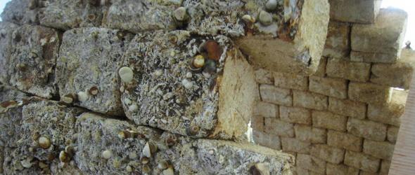 Beépítve - Gombából készítenek téglákat