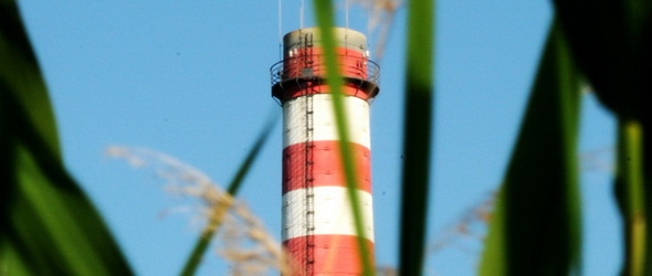 A pécsi erőmű gazdáktól is vásárol biomasszát