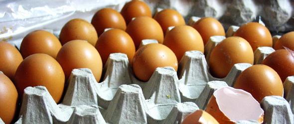 Számtalan lehetőség rejlik a tojáshéjban