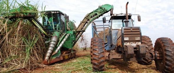 Bioetanol - Több kárt okoz, mint hasznot?