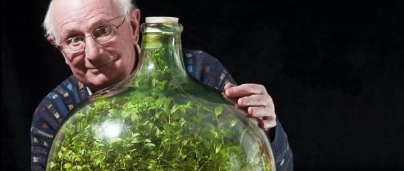 Kert a palackban – 53 év alatt csak egyszer locsolták
