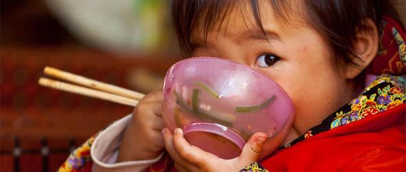Az evőpálcikák felfalják Kína erdejeit