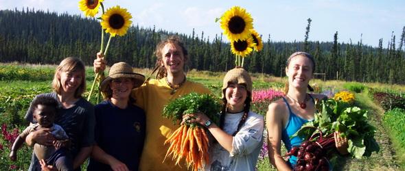 Közösségi mezőgazdálkodás – Összehoz és bizalmat épít