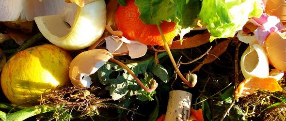 Ingyenes komposztáló ládákért lehet regisztrálni Vas Megyében