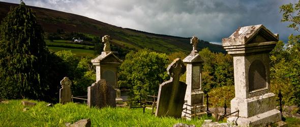 Vissza a természetbe! - Környezetbarát temetkezés