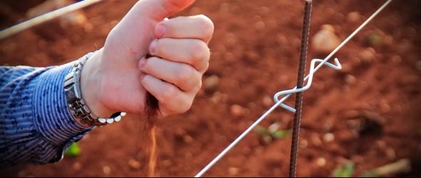 Talaj-pH a kiskertben - Miben terem a legjobb zöldség?