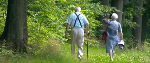 Nyugvóerdő - Már itthon is elérhető a természetközeli erdei temetkezés